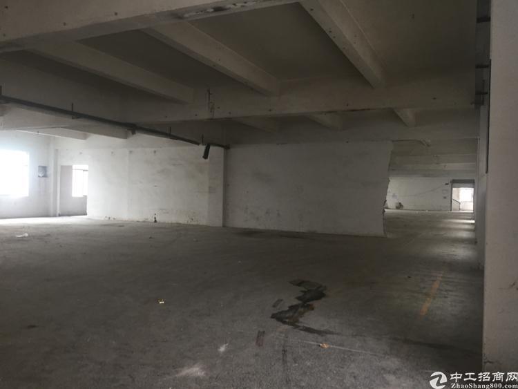 大岭山杨屋107国道旁一二楼厂房共2800平方米
