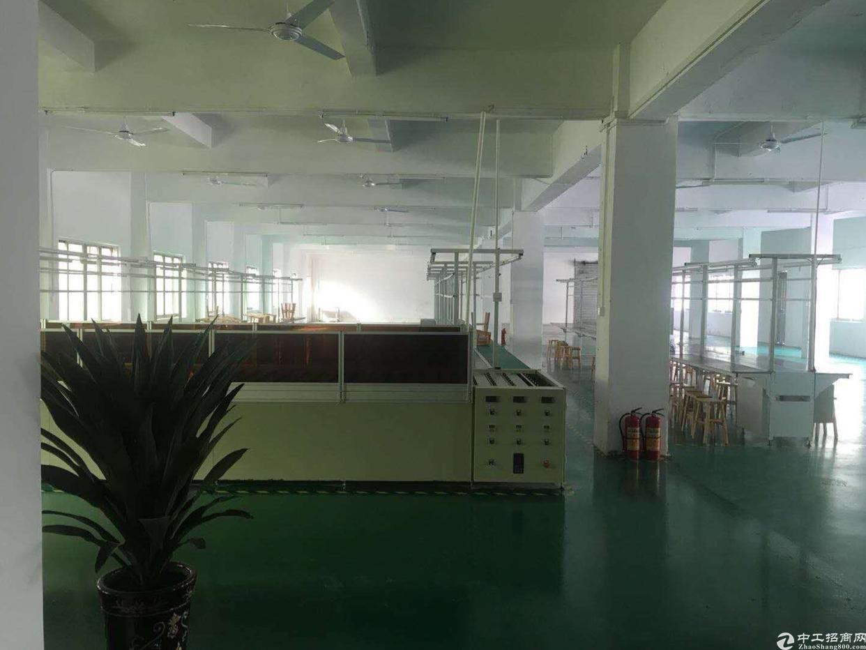 东莞虎门厂房二楼1150平方出租、精装修