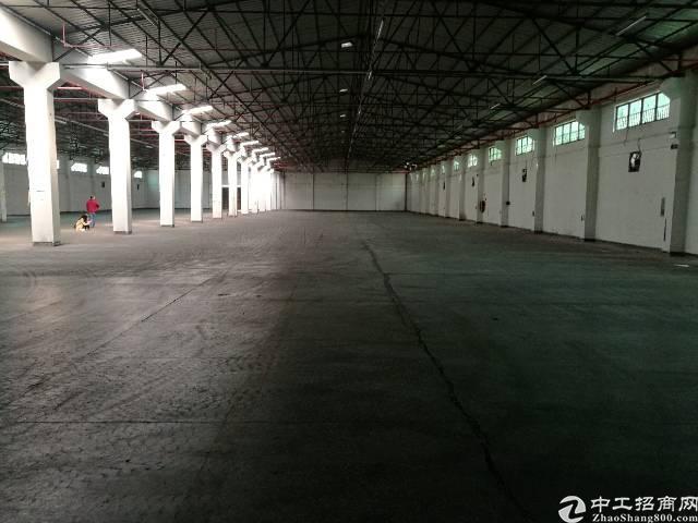 万江环城路边单一层厂房急租