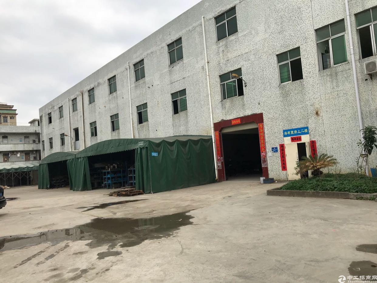 精装修超级靓一楼1200平厂房,面积大好规划,