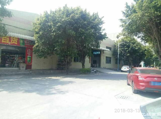 万江原房东独栋单一层砖墙到顶厂房低价招租