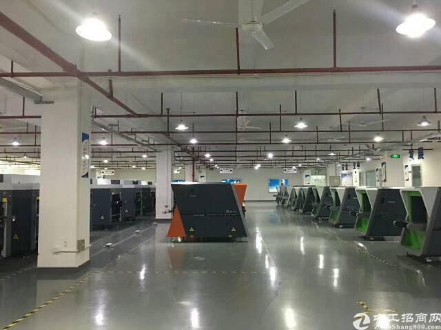 公明田寮南光高速出口新出楼上2000平方带装修厂房出租-图3