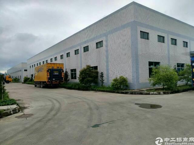 龙溪镇新出原房东标准单一层厂房-图3