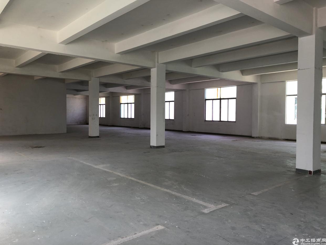 坪山区碧岭街道汤坑新出厂房4楼500平方