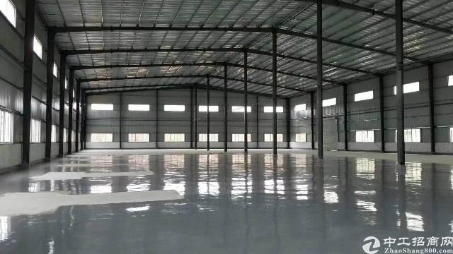 惠州惠城区独门独院滴水8米高钢构厂房出租