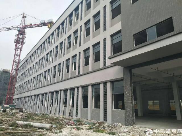 谢岗新建标准厂房10900平,一楼3800方,高度6.5米