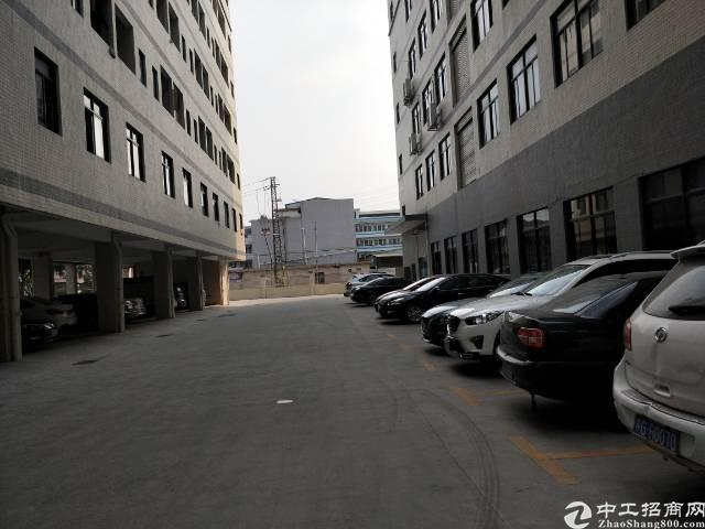 新塘全新标准厂房一楼3000平方出租
