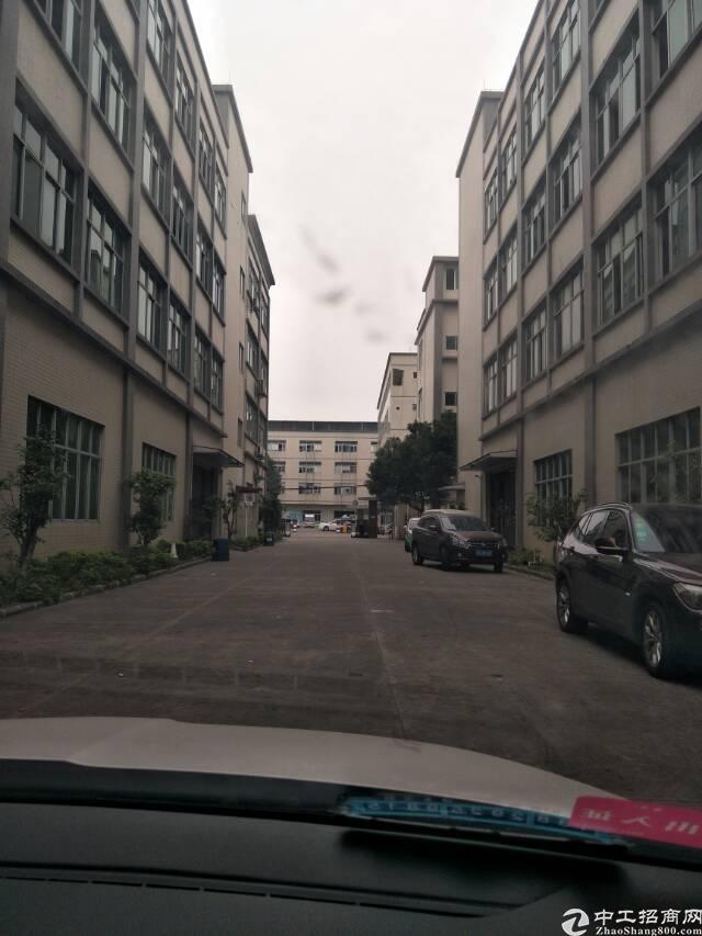 新塘镇独院15000平方标准厂房