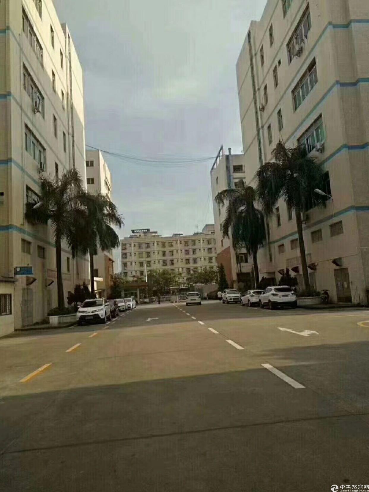 大浪高薪工业区新出一楼带隔楼3000平厂房招租