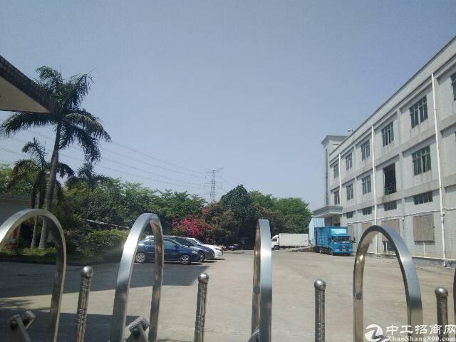 福永107国道独院3600平出租-图2