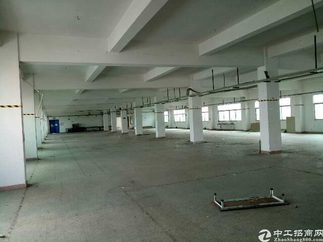 平湖华南边上新出一楼800平方标准厂房招租