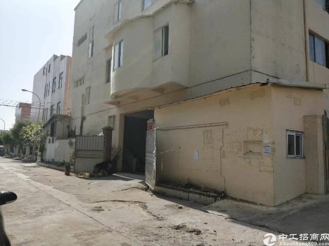 虎门镇新出一楼厂房面积1200平方,租金15块