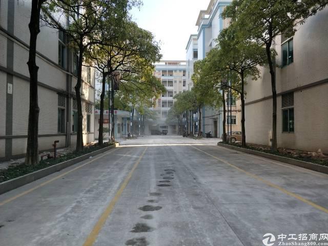 新塘全新厂房2楼2180平方  出租