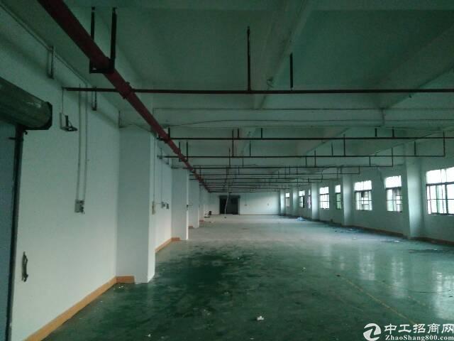 虎门镇大宁靠近广深沿江高速路口楼上精装修厂房出租