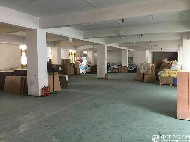 坑梓龙田二楼725平方招租,有电梯