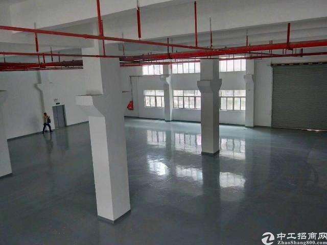 大浪商业中心,超豪华装修7米层高一楼3000平厂房招租