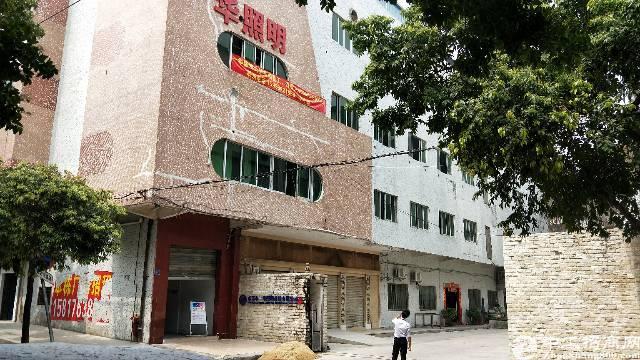 虎门镇新出精装修三楼厂房面积1150平方,租金12块