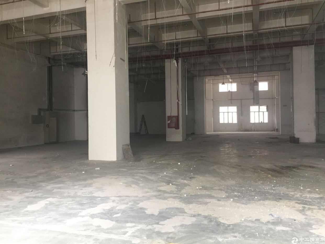 松岗107国道边新出一楼8米高标准厂房1700平米