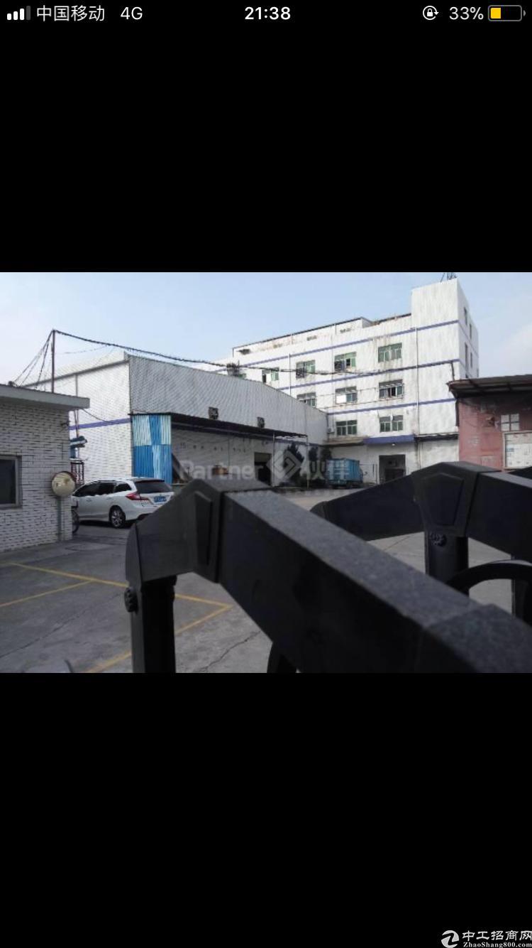 华南城标准厂房出租