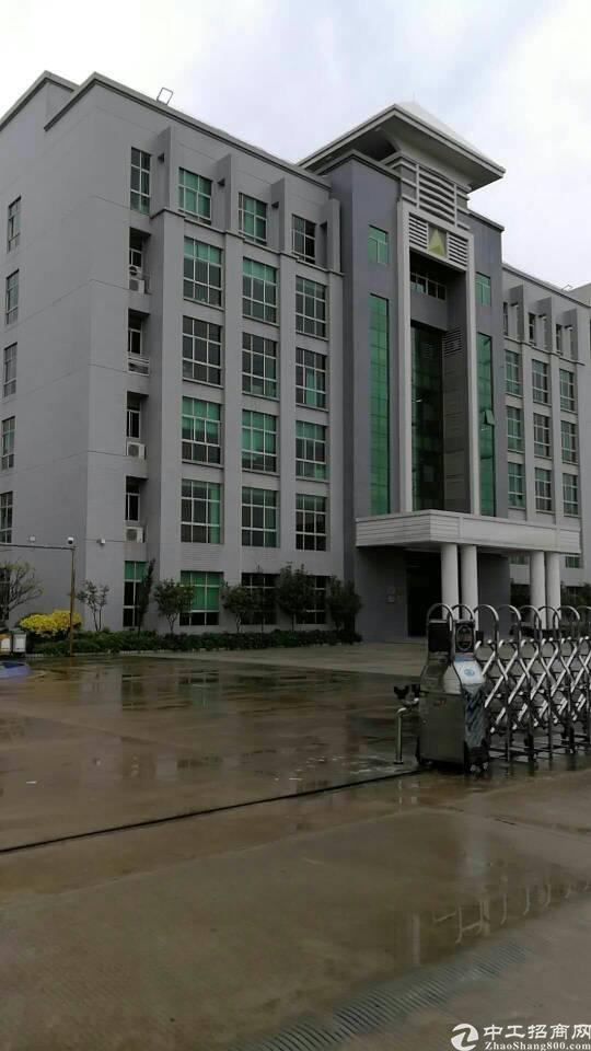(原房东、原房东)红本厂房分租一二楼2250平方