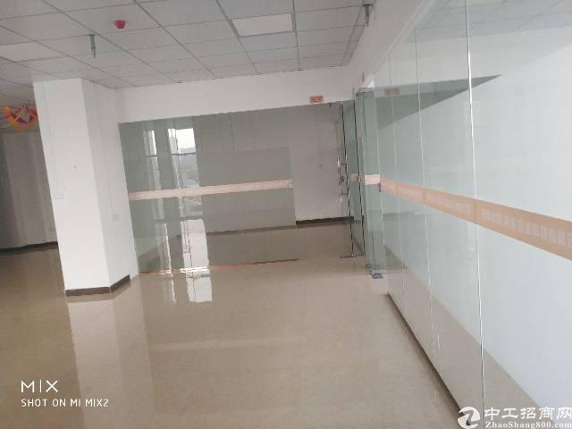 龙华新区油松精豪华装修写字楼招租400平方,采光非常的好
