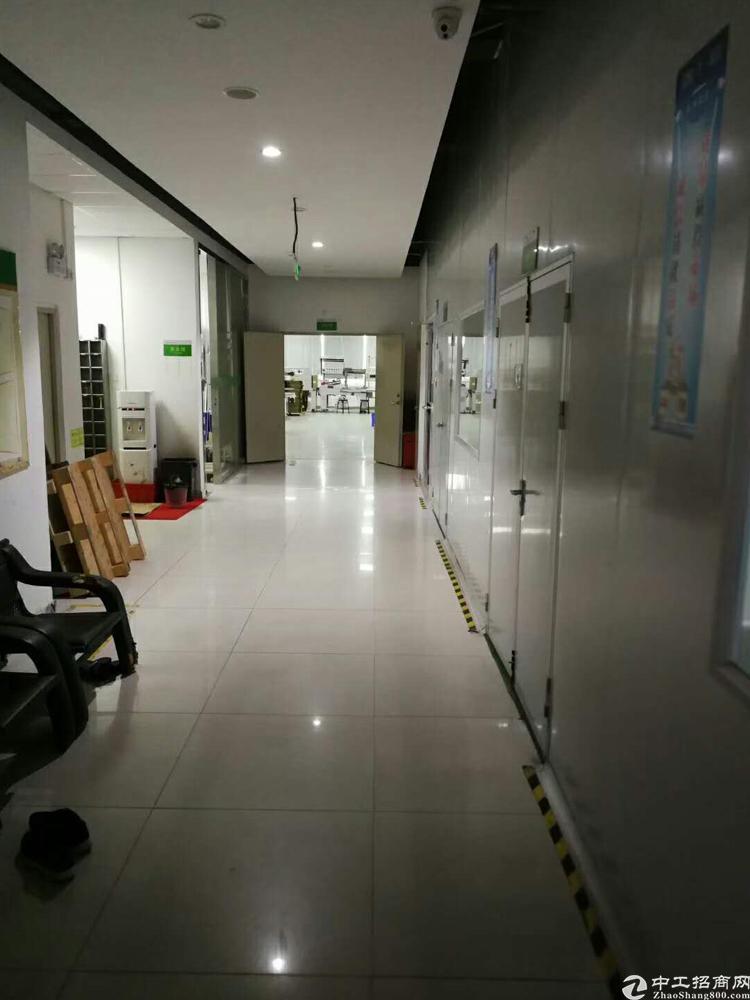 龙华大浪行政中心附近新出楼上3000平-图2