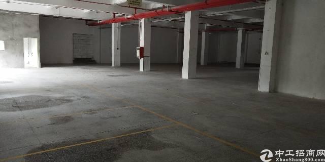 横岗一楼厂房500平带喷淋价格28块