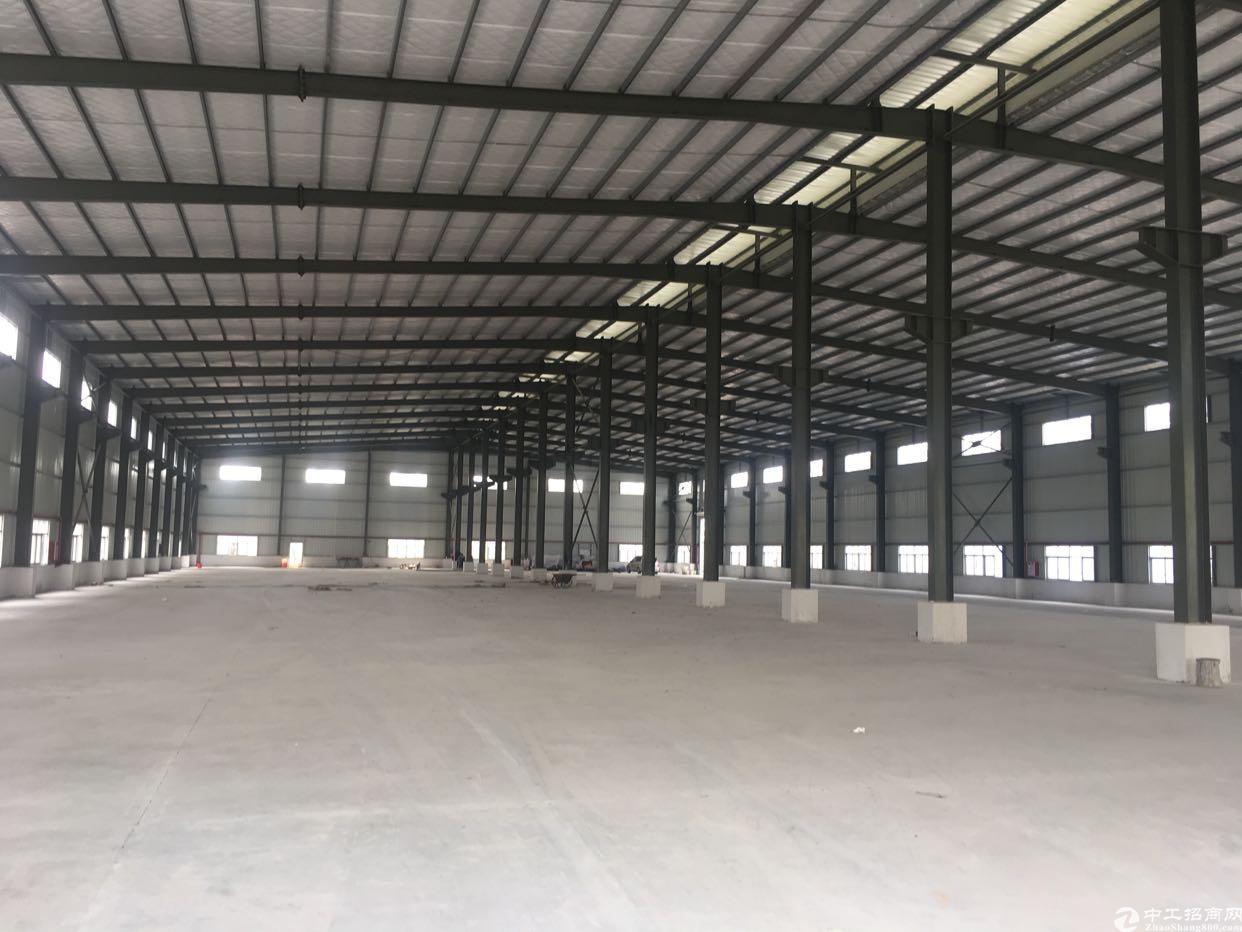 桥头新出全新单一层钢构厂房4820平方