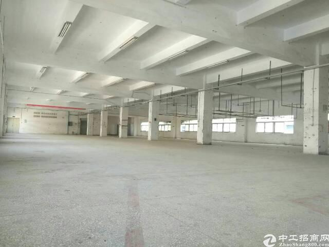 坑梓红本独院厂房6900平可分可整