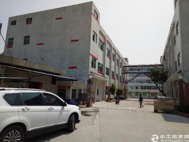 平湖靠观澜独院1–3层11000平米招租!