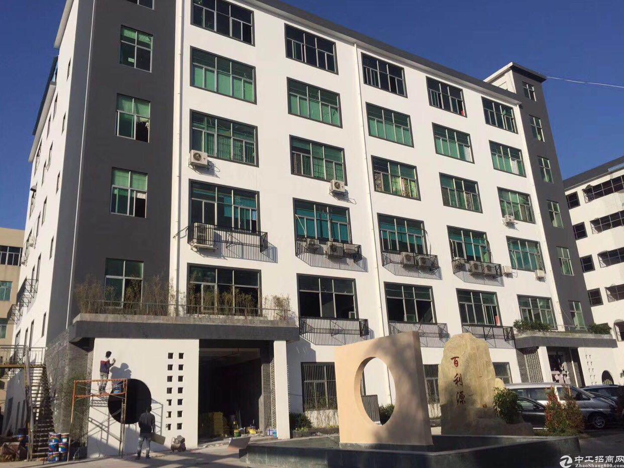龙华电商产业园100平起租