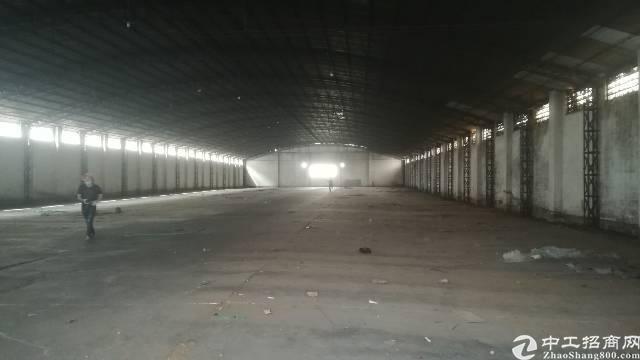 厚街新塘村精品单一层独门钢构厂房