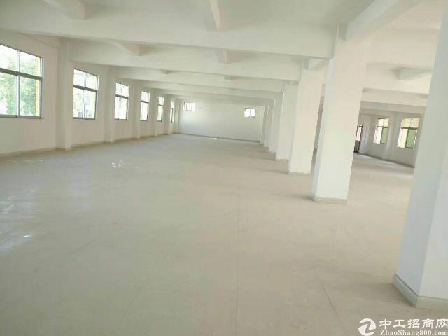 平湖富民工业区厂房招租3楼900平