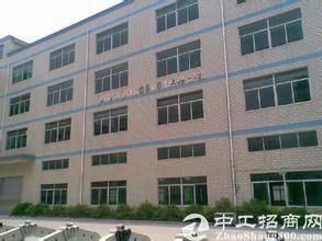 国有证房产证双证齐全 惠州仲恺高新区新出的厂房出售。