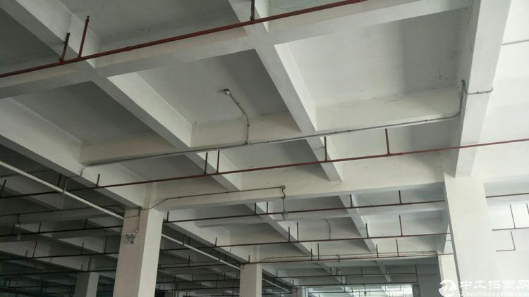新塘镇标准重工业独院厂房