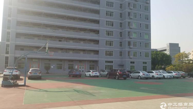 松岗上市公司办公室500平方豪华装修。全区高大上