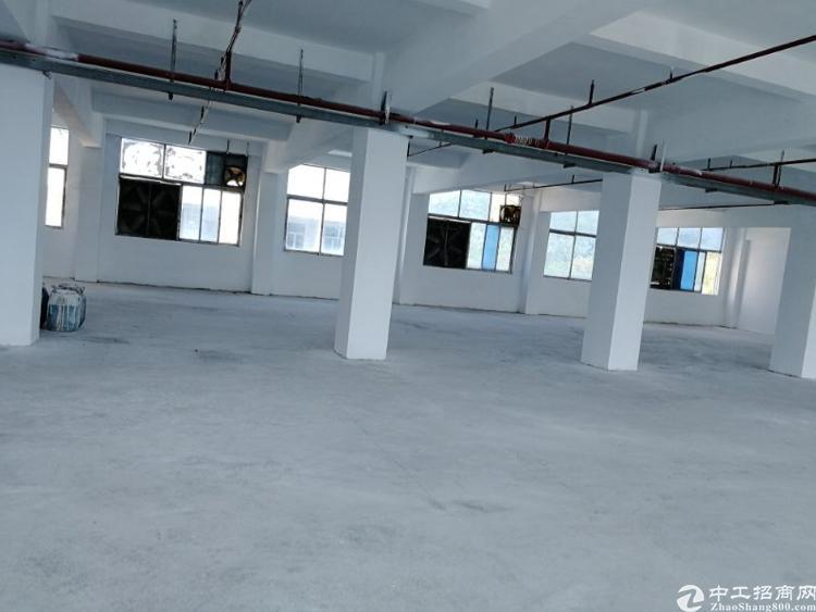 深圳坑梓新出楼上标准带消防喷淋1800平