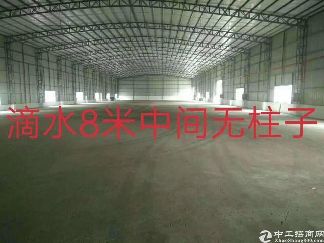 万江小独门独院单一层厂房3000平米租17