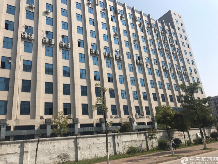 龙岗宝龙二楼1000平精装修厂房招租