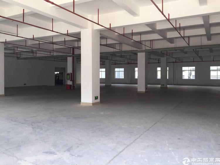 光明高新开发区13000平方带红本厂房出租-图7