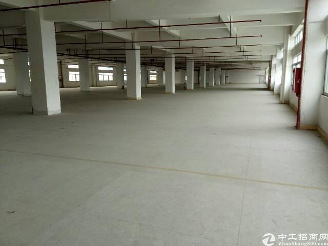 东莞东城新岀1800平方厂房
