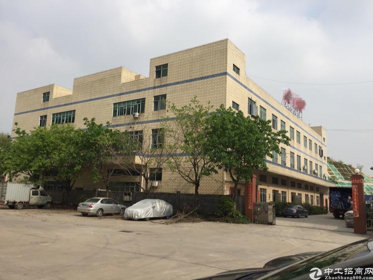 公明下村工业园3000平方米楼上带装修厂房招租-图2