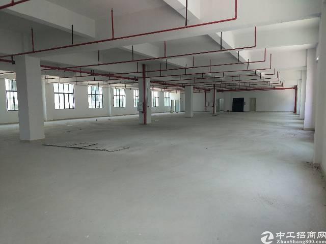 惠州惠阳长布大马路上独栋厂房6000平方,原房东没公摊