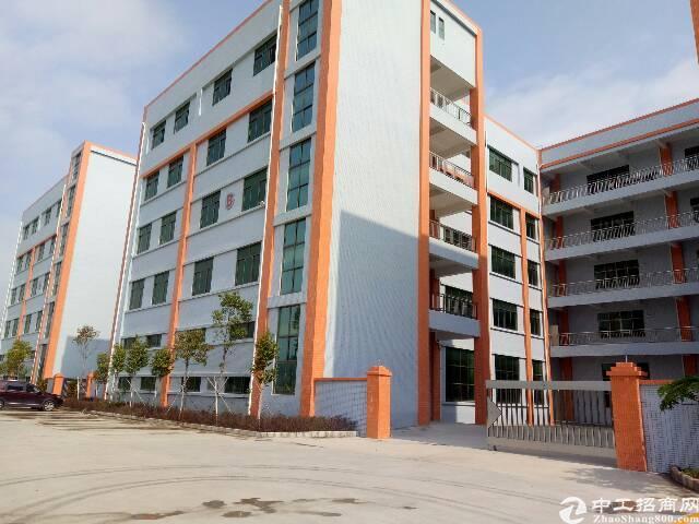 坪山坑梓一楼标准厂房500平米平价出租