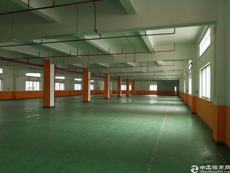 东城区新出厂房