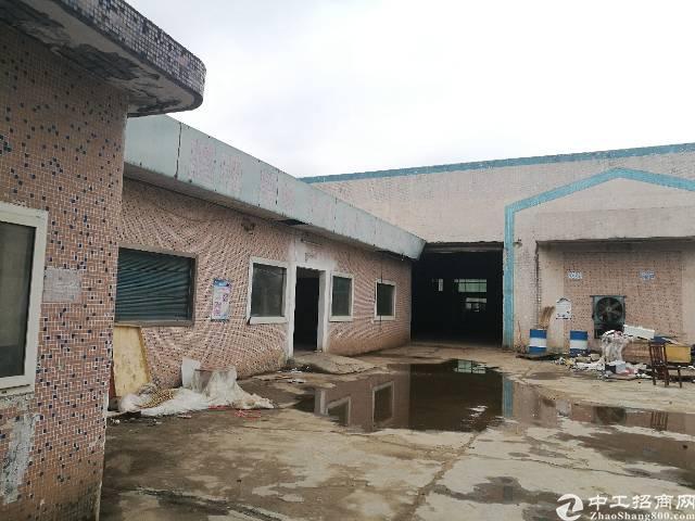 沙井单一层钢结构厂房出租,合适做铁打包,废品回收,仓库