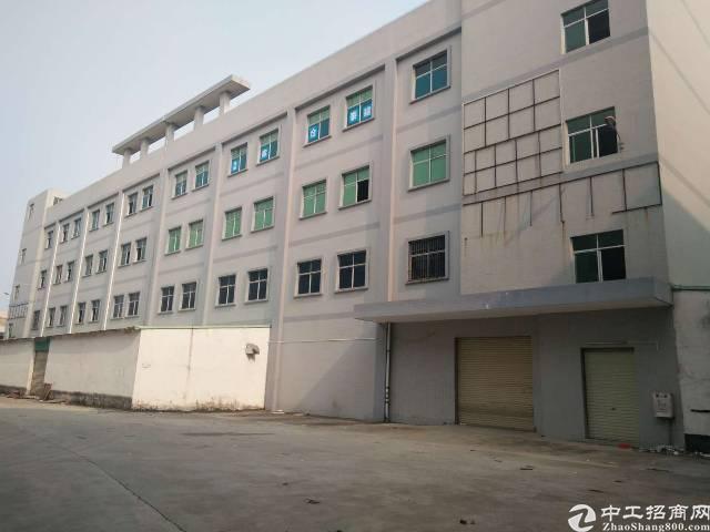 大岭山新出标准厂房独栋四层共10420平方米可分租