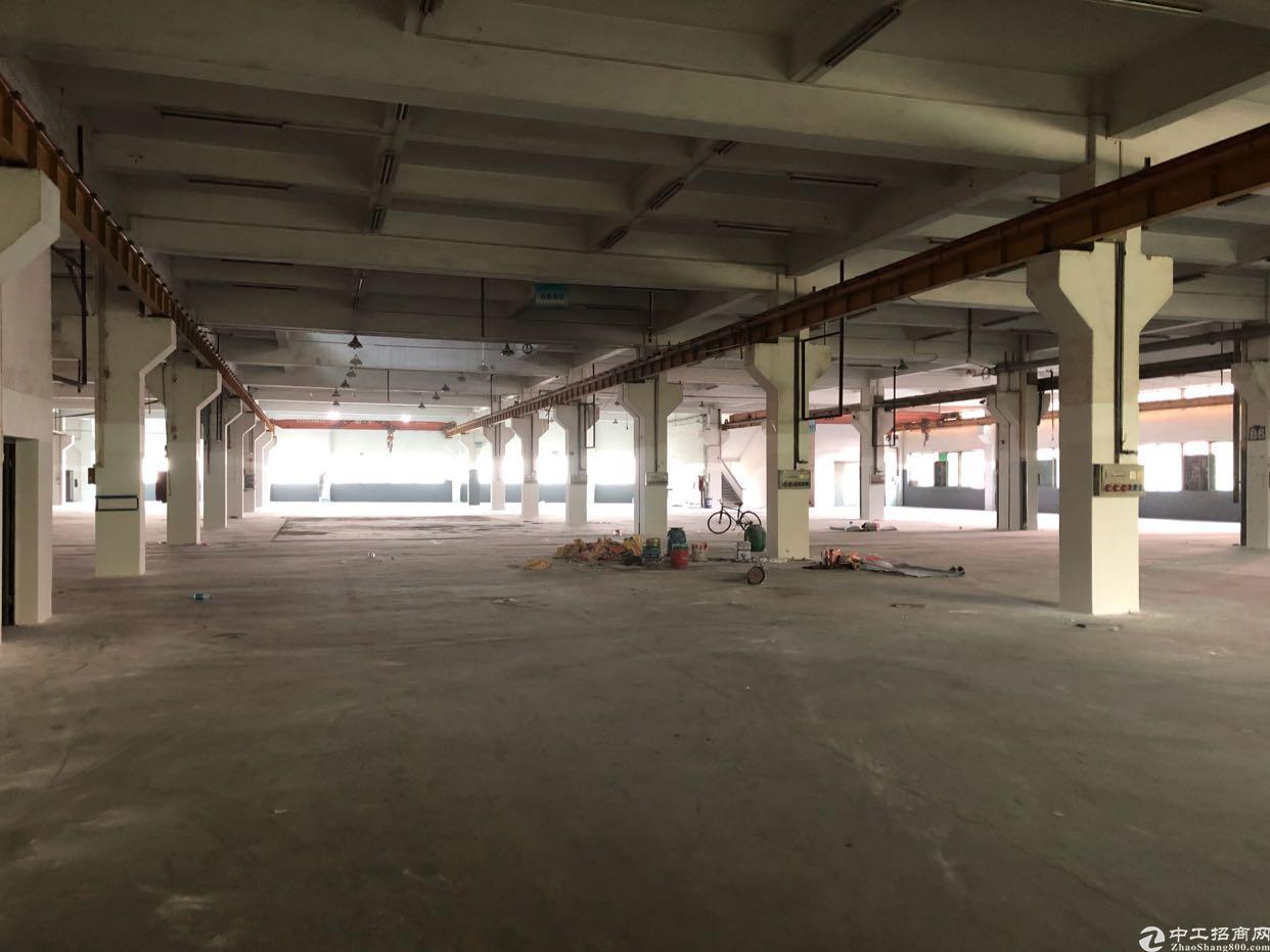 东莞厚街独院厂房出租22000平方米一楼二楼带牛角