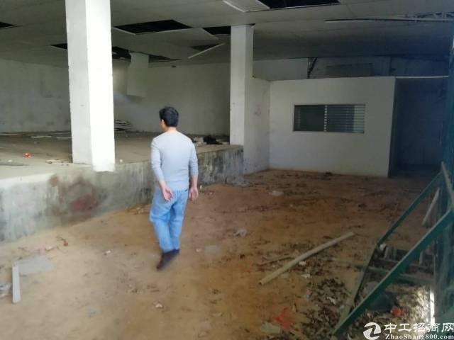 横岗安良原房东无公摊钢构厂房500平米