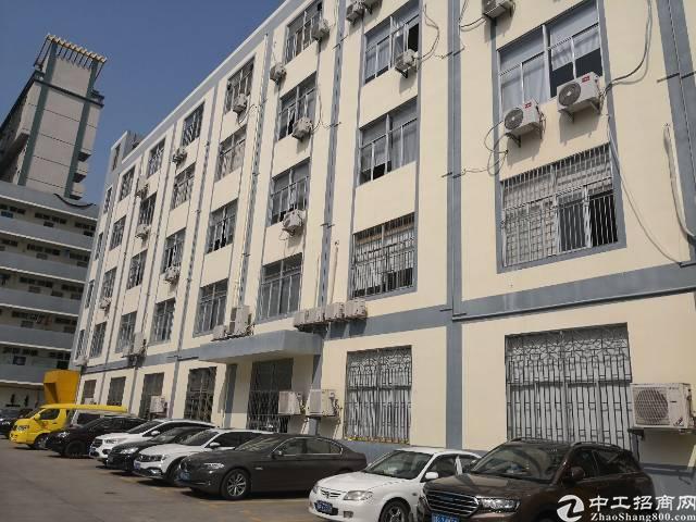 横岗 六约 深坑社区电商园区二楼680平厂房招租